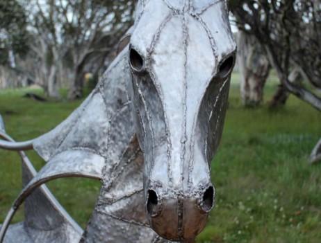 horse + emu 01